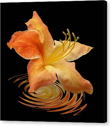 Azalea Ripples Canvas Print
