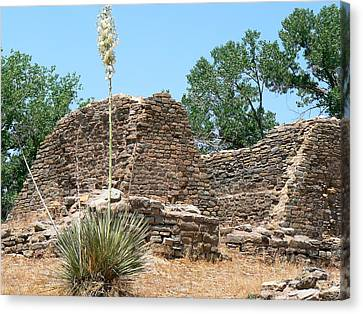 Aztec Ruins National Monument Canvas Print