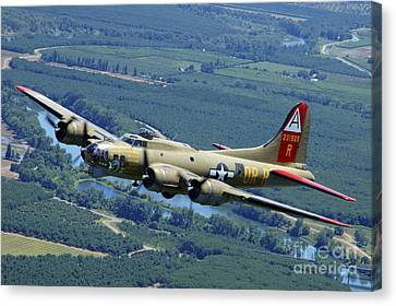 B-17 Flying Fortress Flying Canvas Print by Phil Wallick