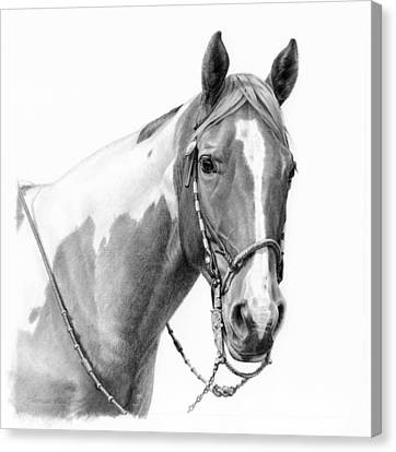 B And W Study Canvas Print by JQ Licensing