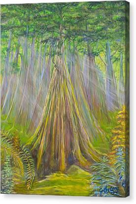 B C Cedars Canvas Print by Cathy Long