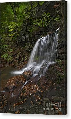 Canvas Print featuring the photograph B Reynolds Falls by Roman Kurywczak