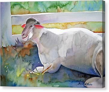 Canvas Print featuring the painting Baa by Shirin Shahram Badie