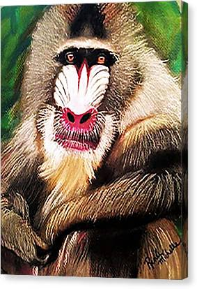 Baboon Stare Canvas Print by Renee Michelle Wenker