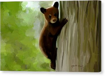 Baby Bear Canvas Print by Nydia Williams