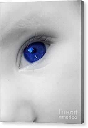 Baby Blue Canvas Print by Nina Ficur Feenan