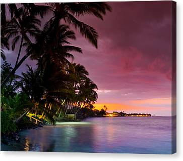 Baby Blues And Pinks Canvas Print by Sean Davey