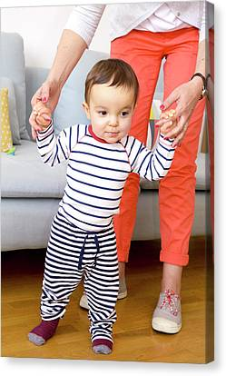 Baby Boy Learning To Walk Canvas Print by Aj Photo