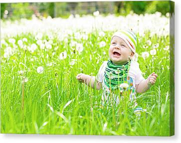 Baby Boy With Dandelions Canvas Print by Wladimir Bulgar