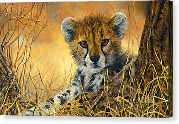 Cheetah Canvas Print - Baby Cheetah  by Lucie Bilodeau