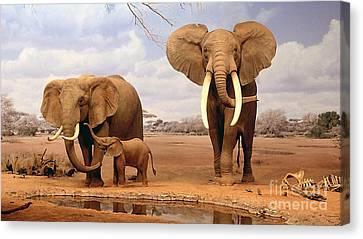Baby Elephant Canvas Print by Marvin Blaine