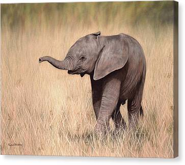 Elephant Calf Painting Canvas Print by Rachel Stribbling