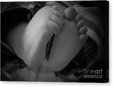 Baby Feet Canvas Print by Barbara Bardzik