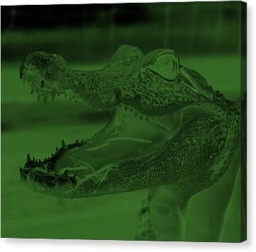 Baby Gator Neg Olive Green Canvas Print by Rob Hans