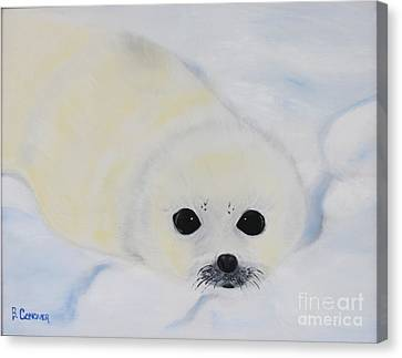 Canvas Print featuring the painting Baby Harp Seal by Bev Conover