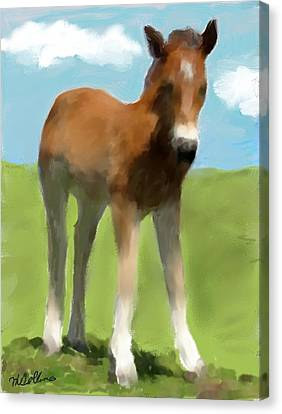 Canvas Print featuring the painting Baby Horse by Mary M Collins