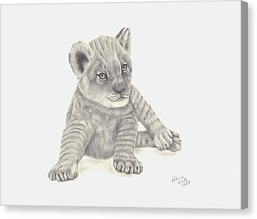 Canvas Print featuring the drawing Baby Lion by Patricia Hiltz