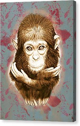 Baby Monkey - Stylised Drawing Art Poster Canvas Print by Kim Wang