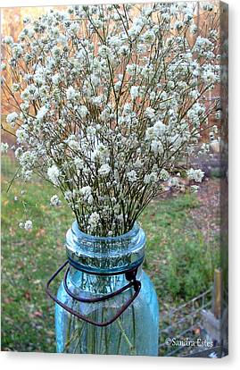 Baby's Breath Bouquet Canvas Print