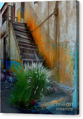 Back Entry Canvas Print by CJ  Rider