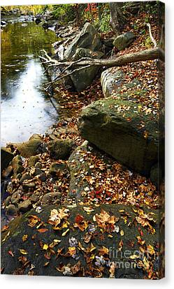 Back Fork Of Elk River Canvas Print by Thomas R Fletcher