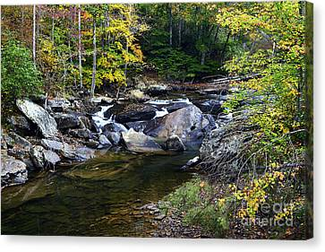 Back Fork Of Elk River Waterfall Canvas Print by Thomas R Fletcher
