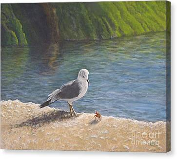 Sea Birds Canvas Print - Back Off by Cindy Lee Longhini