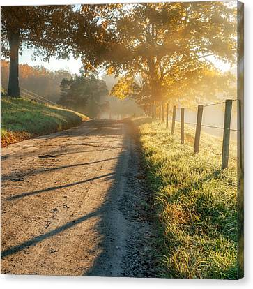 Back Road Morning Square Canvas Print