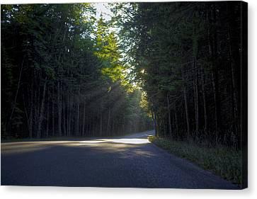 Back Roads Canvas Print by Kenny Noddin