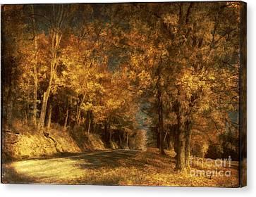 Back Roads Canvas Print by Lois Bryan