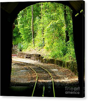 Canvas Print featuring the photograph Back Tracking by Joy Hardee