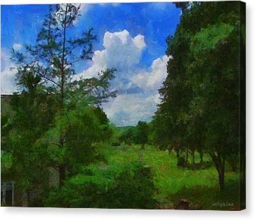 Back Yard View Canvas Print by Jeffrey Kolker