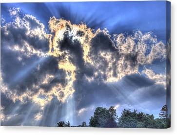 Backlight Canvas Print by Craig T Burgwardt