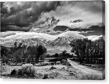 Backroads Of Bishop Canvas Print by Cat Connor