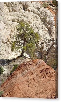 Backroads Utah 5 Canvas Print