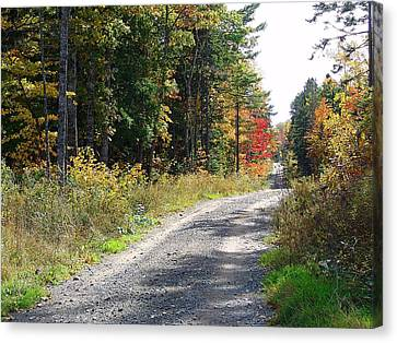 Gravel Road Canvas Print - Backwoods Road In Autumn by Janet Ashworth