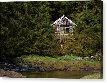 Backwoods Shack Canvas Print