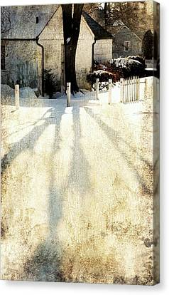 Backyard Canvas Print by Diana Angstadt
