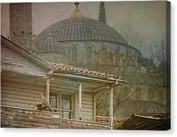 Backyard Splendor Canvas Print by Joan Carroll