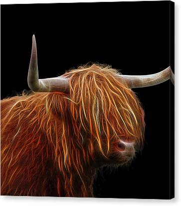 Bad Hair Day - Highland Cow Square Canvas Print