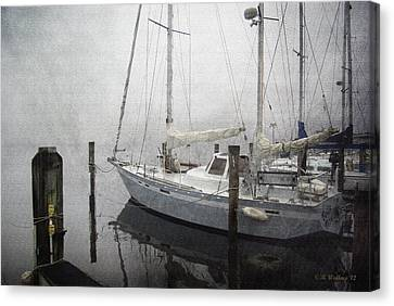 Bad Weather Canvas Print by Brian Wallace