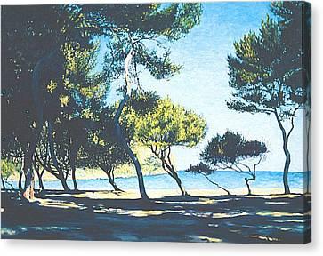 Badia De Alcudia -- Mallorca Canvas Print by Herschel Pollard