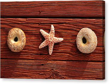Everything Bagel Canvas Print by Laura Fasulo