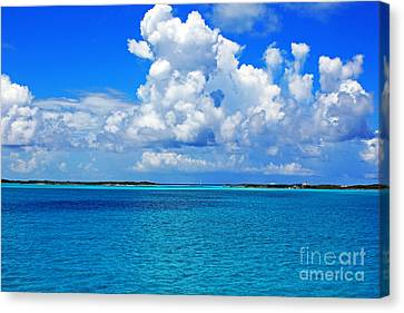 Bahama Blues 5 Canvas Print by Alison Tomich