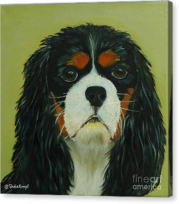 Canvas Print featuring the painting Cavalier King Charles Spaniel by Shelia Kempf