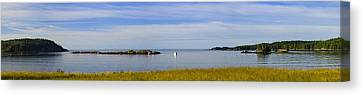 Bailey's Mistake Panorama Canvas Print by Marty Saccone