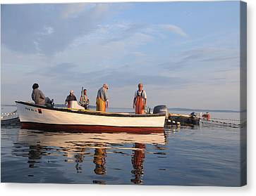 Canvas Print featuring the photograph Bait Fishers by Paul Miller