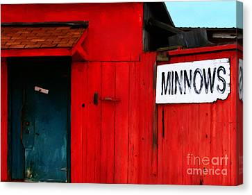 Bait Shop 20130309-2 Canvas Print by Wingsdomain Art and Photography