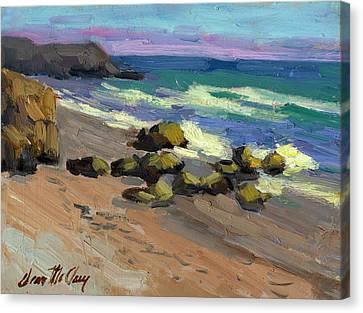 Baja Beach Canvas Print by Diane McClary