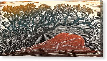Bajo La Sombra Canvas Print by Maria Arango Diener